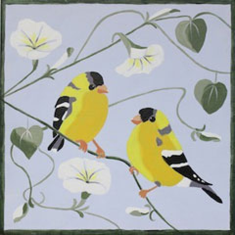 Finches and Morning Glories