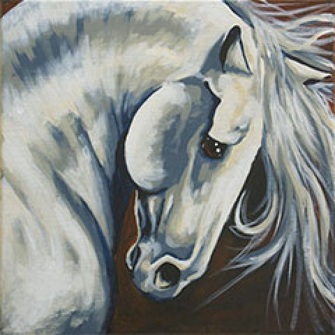 Majestic Stallion