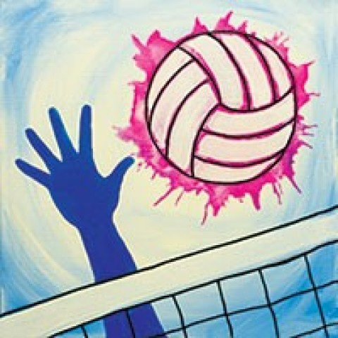 Vibrant Volleyball